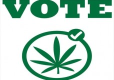 Colorado, Washington approve recreational marijuana use