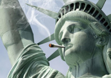 Pro Marijuana Campaign Looks Ahead After 2012 Victories