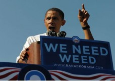 Obama Squanders $300 Million to Eradicate Medical Marijuana