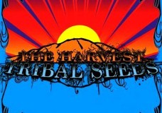 Warning by Tribal Seeds (Feat. Sonny Sandoval of P.O.D.)