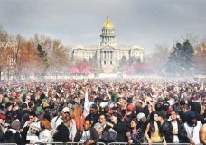 Top 10 Marijuana Victories of 2012