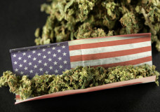 Cannabis Cup Scheduled for First Time in U.S. 2013
