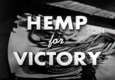 House Approves Amendment for Nationwide Hemp Research