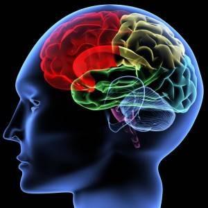 brain-hyman-300x300