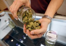 A budtender pours marijuana from a jar at Perennial Holistic Wellness Center medical marijuana dispensary in Los Angeles on July 25. David McNew / Getty Images file