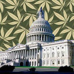 Support for Marijuana Legalization Perplexing Lawmakers