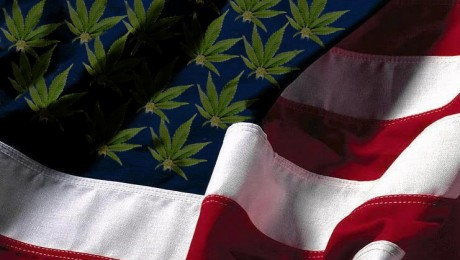75% of US Adults Says Legalization of Marijuana Is Inevitability
