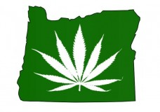 Over 100 Oregon Cities Implement Moratoriums on Medical Marijuana Dispensaries