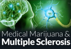 Research Shows Medical Marijuana Effective Treatment for Multiple Sclerosis