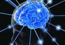 Cannabis Increases Brain Efficiency