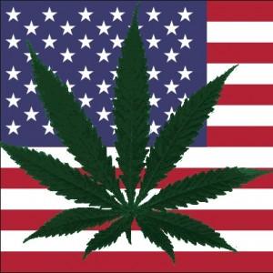 Marijuana Legalization Measures Pass in Oregon and DC, but Medical Falls Short in Florida