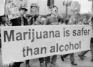 Recreational Cannabis Found to be Safer by Wide Margin
