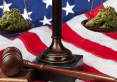 California Dispensary 'Berkeley Patients Group' Wins in Federal Court