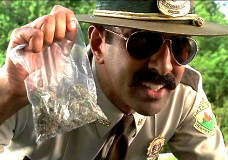 D.C. Man Demands Police Return His Confiscated Marijuana…and They Did!