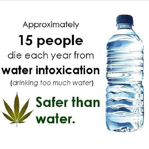 safer-than-water.jpg