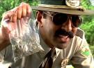 California: Cops Raid Dispensary at Gunpoint, Eat Marijuana Edibles [VIDEO]