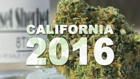 California: Demand for Recreational Cannabis Reaches All-Time High