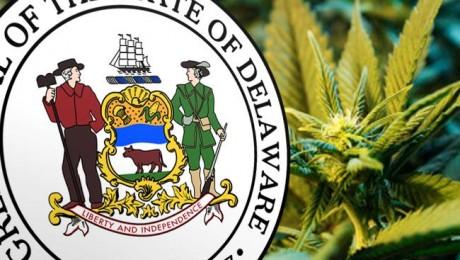 Delaware Decriminalizes Cannabis