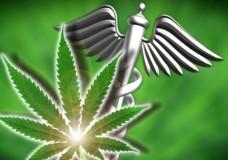 Does Marijuana Combat HIV and AIDS?