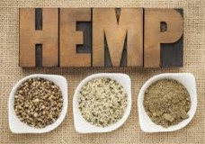 The Revolution of the Hemp Industry