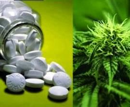 New Study Shows Marijuana Dispensaries Save Lives - Weed Finder ™ News