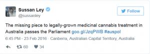 Australia Legalizes Medical Marijuana - Weed Finder™ News