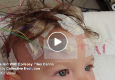 Canada: Man Successfully Treats Daughter's Epileptic Seizures with Cannabis Oil
