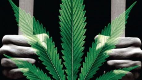Former California Prison Becoming Marijuana Grow Facility
