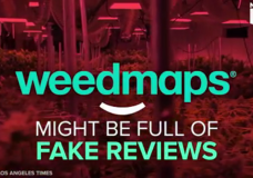 Is WeedMaps Full of Fake Reviews?