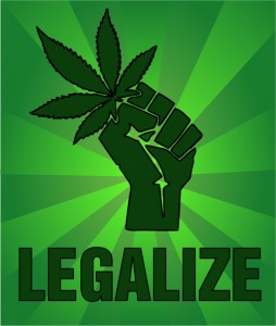 The 5 States Most Likely to Legalize Recreational Cannabis in November 2016 - Weed Finder™ News