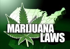 The 5 States Most Likely to Legalize Recreational Cannabis in November 2016
