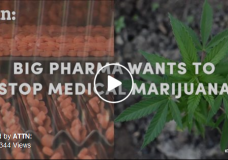 Big Pharma is Paying to Block Marijuana Legalization