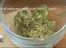 Veterans, Children Fighting for Medical Marijuana Legalization