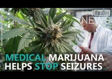 Marijuana Helps Stop Seizures