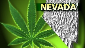 Nevada Almost Out of Weed, Gov Endorses 'Statement of Emergency' - Weed Finder News