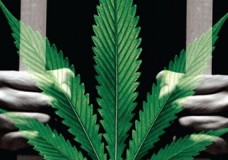 Finding Employees without Prior Cannabis Convictions an Issue for Dispensaries