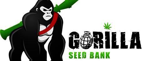 Gorilla Seeds