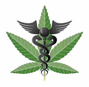 United Health & Wellness, North County